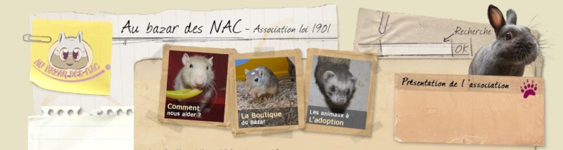 ASSOCIATION AU BAZAR DES NACS Zau_ba10