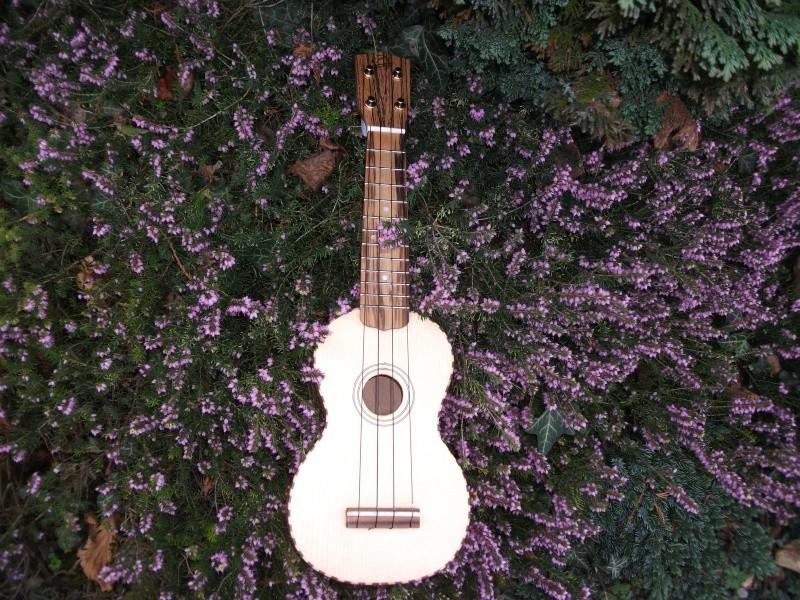 mon uku de luthier 00310