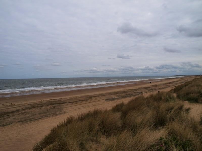 Escapade en mer du Nord  (Belgique) P5133110