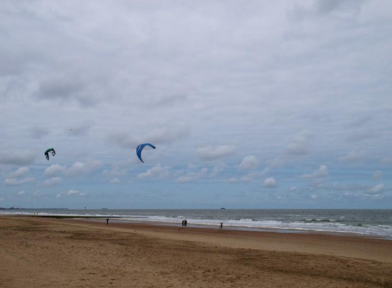 Escapade en mer du Nord  (Belgique) P5133111