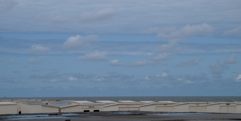 Escapade en mer du Nord  (Belgique) P5133210