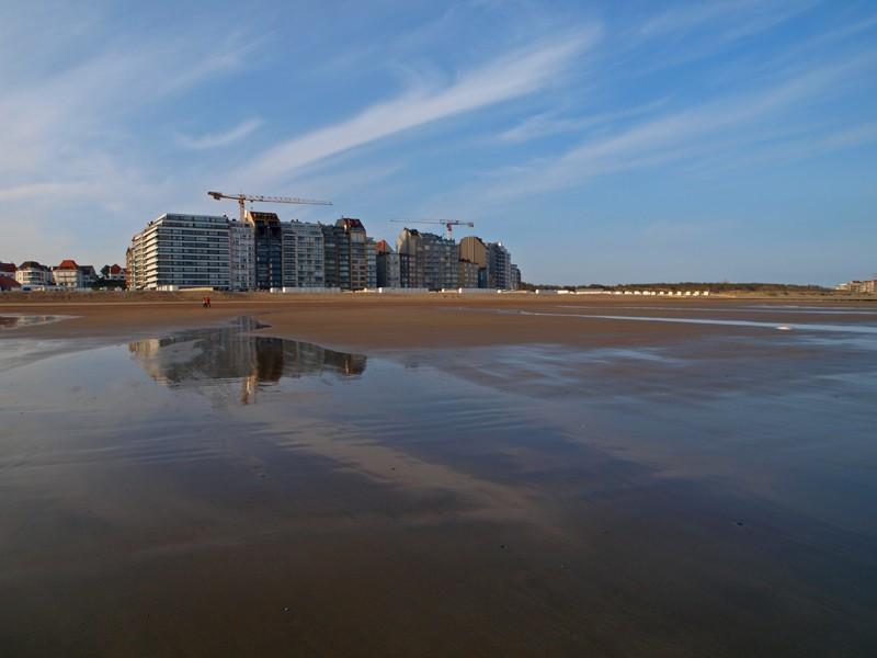 Escapade en mer du Nord  (Belgique) P5143210