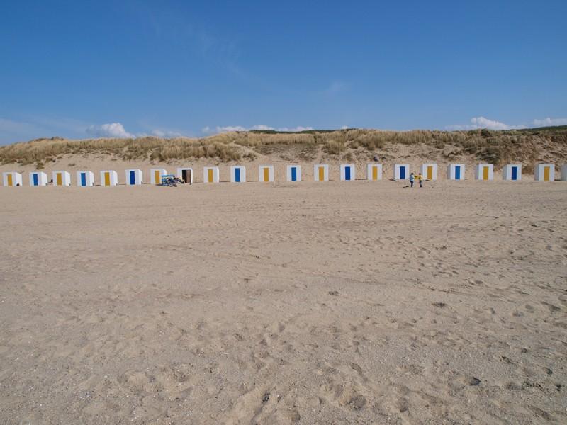 Escapade en mer du Nord  (Belgique) P5143311