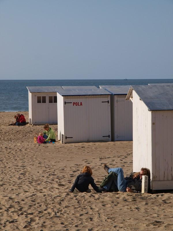 Escapade en mer du Nord  (Belgique) P5143410