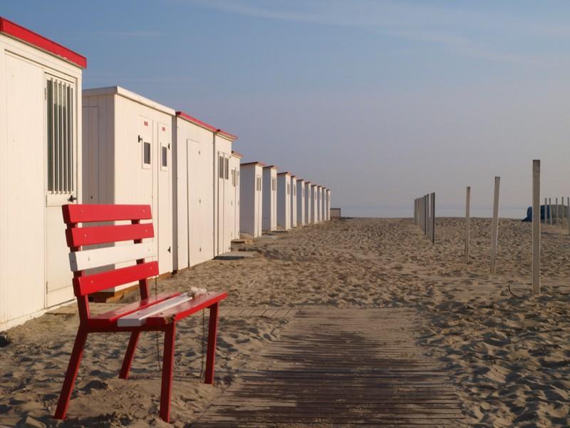 Escapade en mer du Nord  (Belgique) P5153410