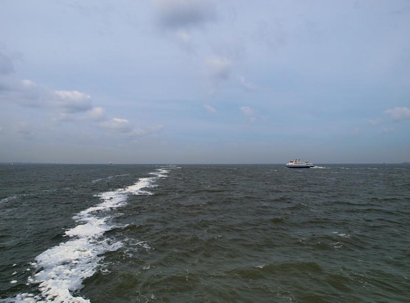 Escapade en mer du Nord  (Belgique) P5163410