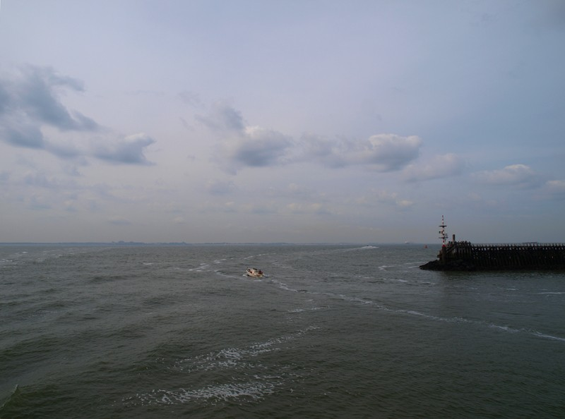 Escapade en mer du Nord  (Belgique) P5163411