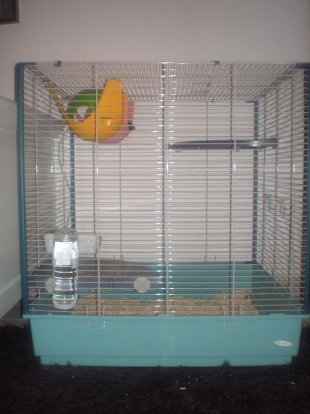 Vends Cage Furet Ferplast XL (13) P3040010
