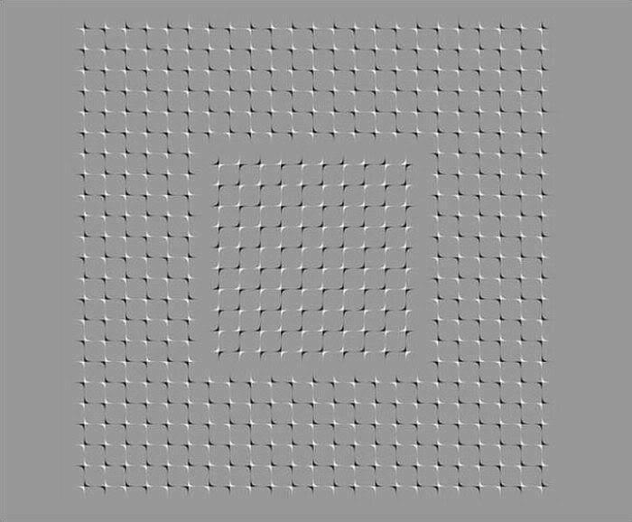 Illusions 25980810