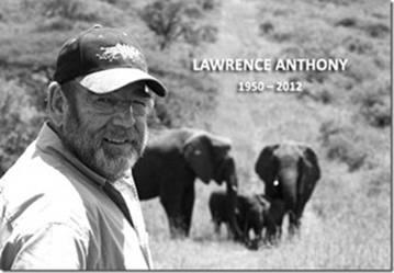 une mémoire d'éléphant Antony13