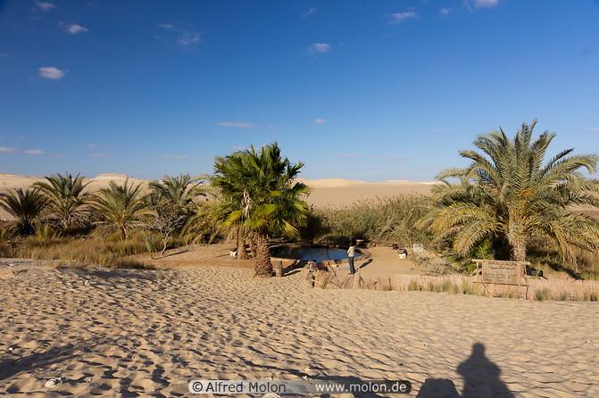 Egypte: Siwa, l'oasis mystérieuse Cate_s11