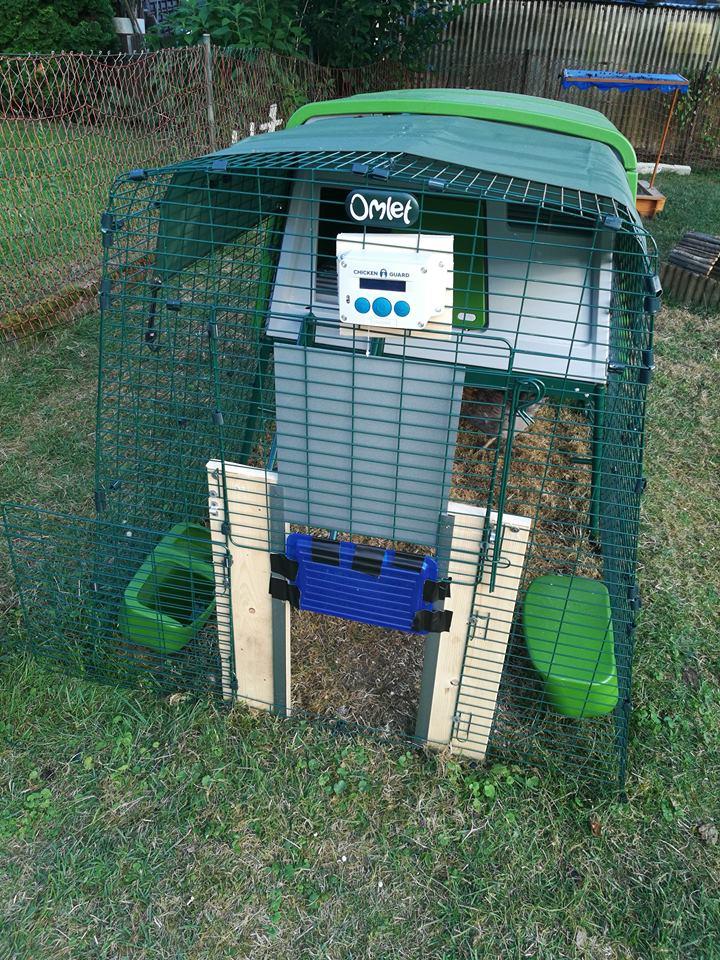 Hühner - Türen Omlet10