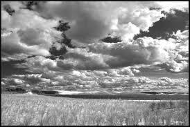photos en noir et blanc - Page 4 Image110