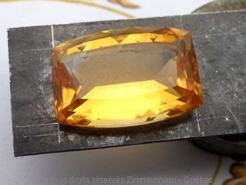 Pendentif Citrine et Diamant bleu Peafb012