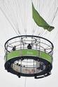 Familia Jolie Pitt passeiam de balão. 0217