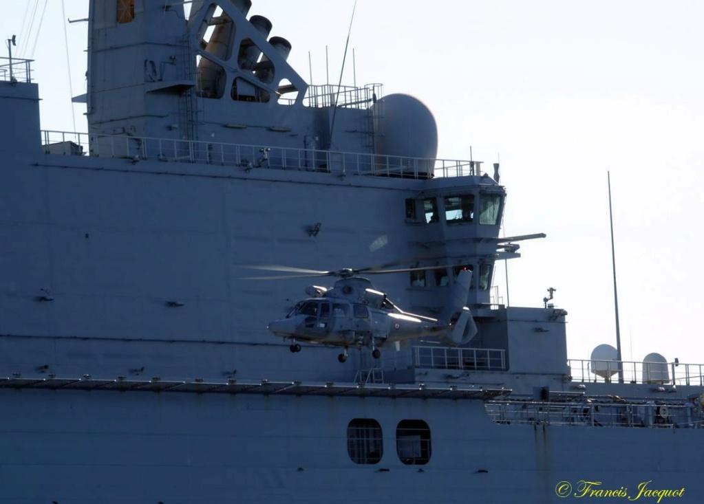 [Les Ports Militaires de Métropole] Toulon Exercice Dynamic Mariner 20 24116