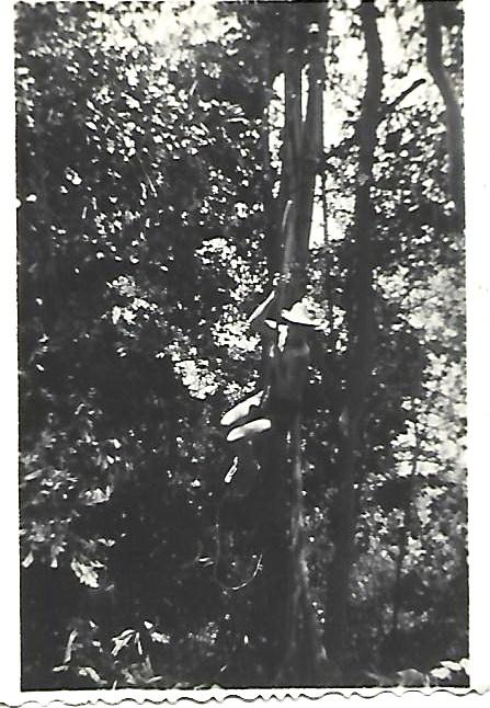 [Opérations de guerre] INDOCHINE - TOME 12 - Page 33 Liane110