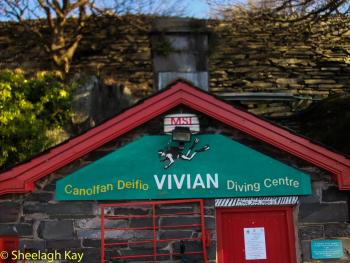 Vivian - Sunshine diving!! Dscf8320