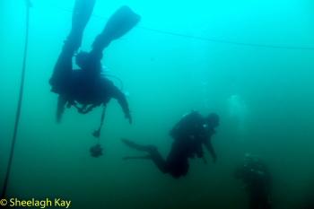 Vivian - Sunshine diving!! Dscf9124