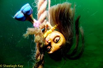 Vivian - Sunshine diving!! Dscf9310