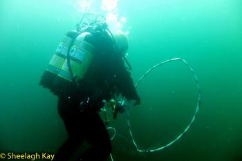 Vivian - Sunshine diving!! Dscf9314