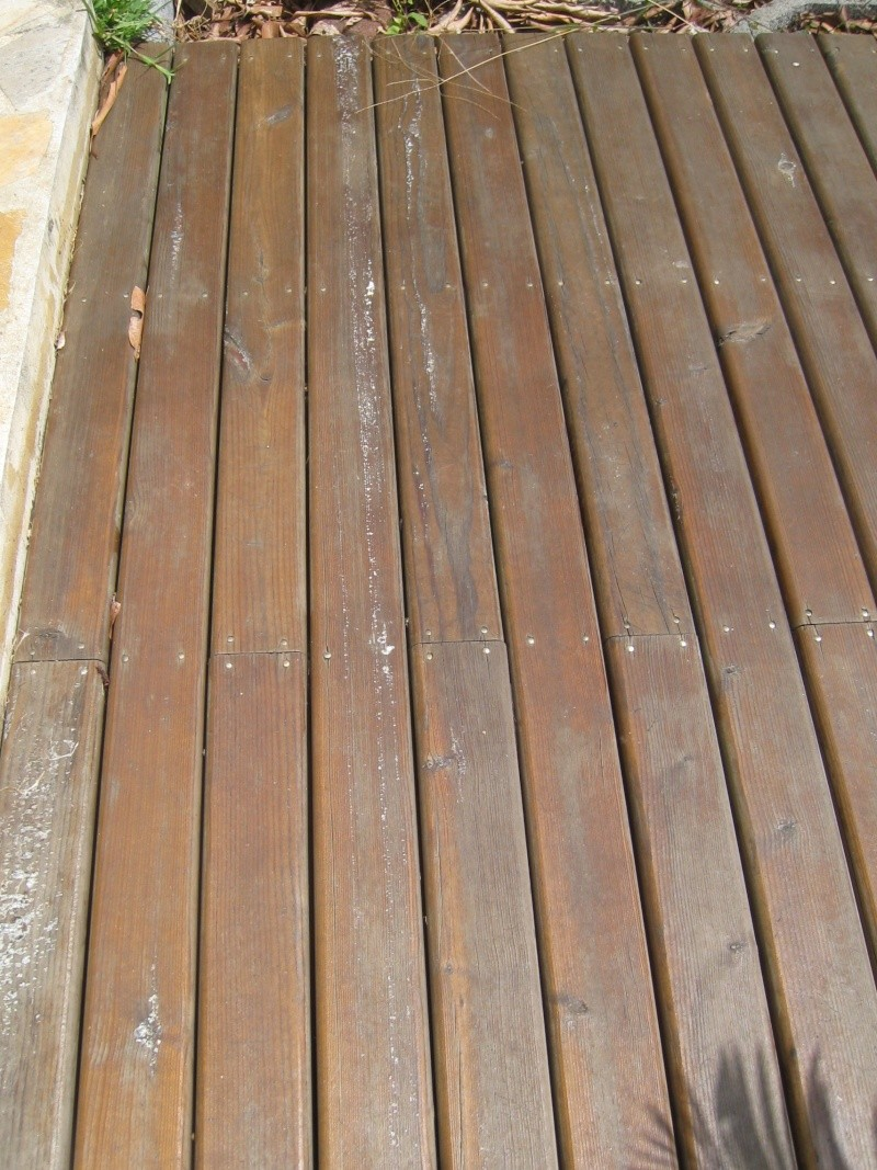 Terrasse en pin, passée au saturateur, et remontées de sève Img_3219