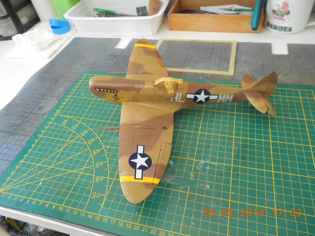 supermarine spitfire mk VIII 1/32 tamiya  - Page 2 Dscn0249