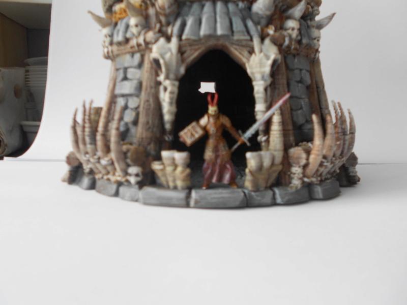 Tour médiévale fantastique pour jeux de plateaux échelle 28mm - Page 2 Dscn2169