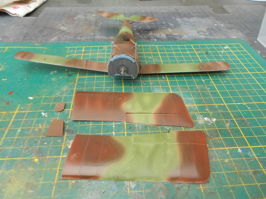 Nieuport 1/32 csm - Page 3 Dscn3021
