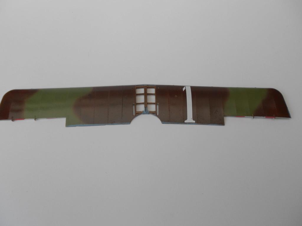 Nieuport 1/32 csm - Page 4 Dscn3059