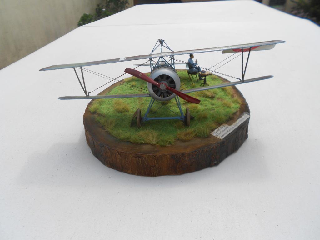 Nieuport 1/32 csm - Page 4 Dscn3104