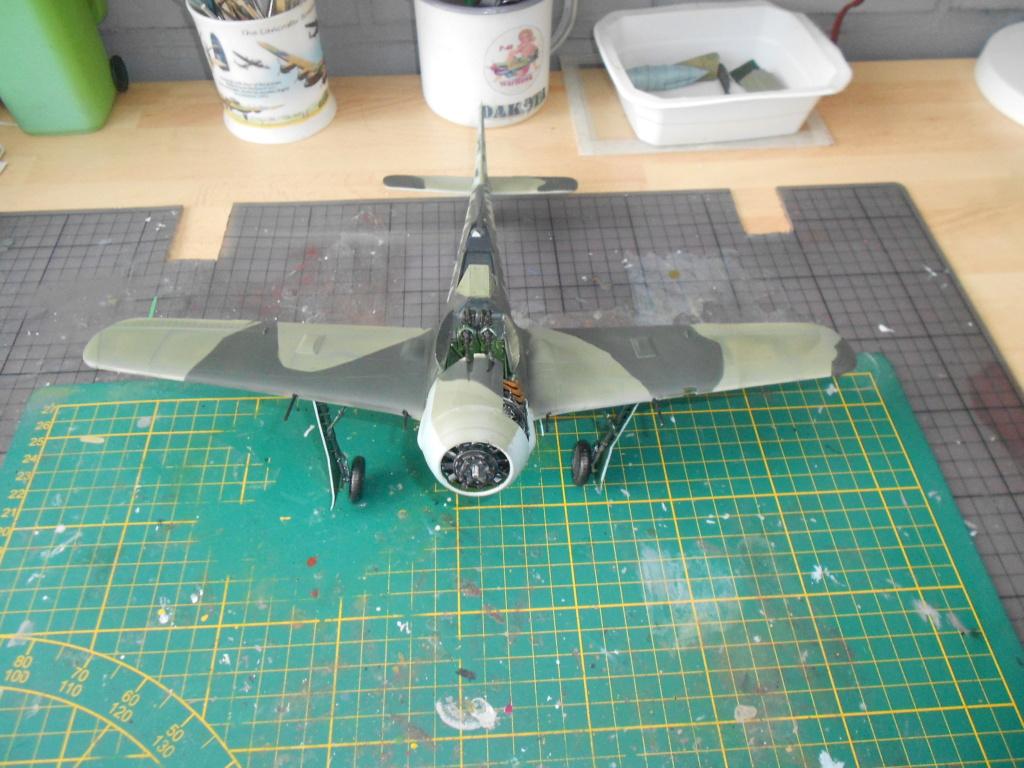 revell 1/32 focke wulf 190 a-8 nightfighter  - Page 2 Dscn3816