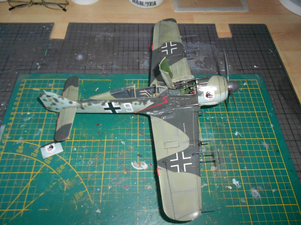 revell 1/32 focke wulf 190 a-8 nightfighter  - Page 2 Dscn3857
