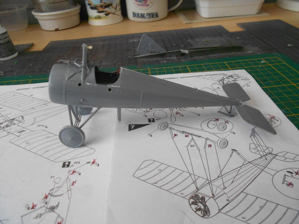 morane-saulnier type n 1/32 special hobby  - Page 2 Dscn5029
