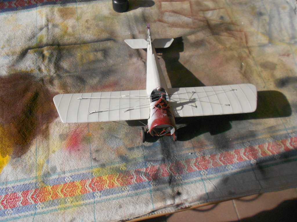 Morane-Saulnier Type N - 1/32 - Special Hobby - Page 3 Dscn5133