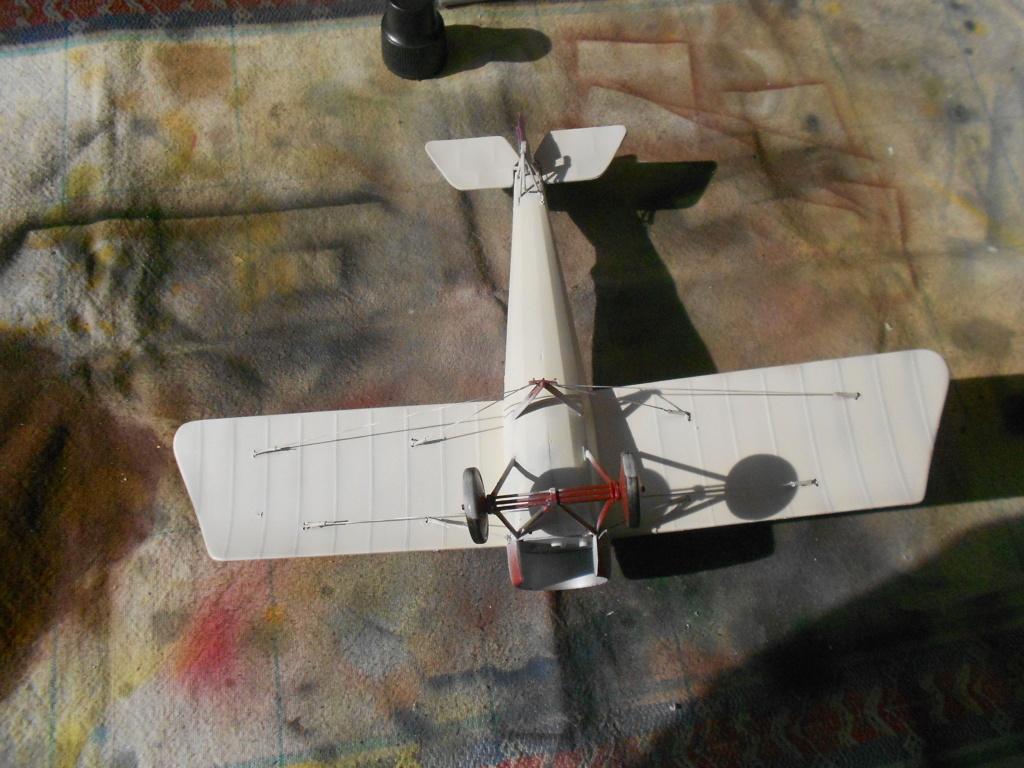 Morane-Saulnier Type N - 1/32 - Special Hobby - Page 3 Dscn5134