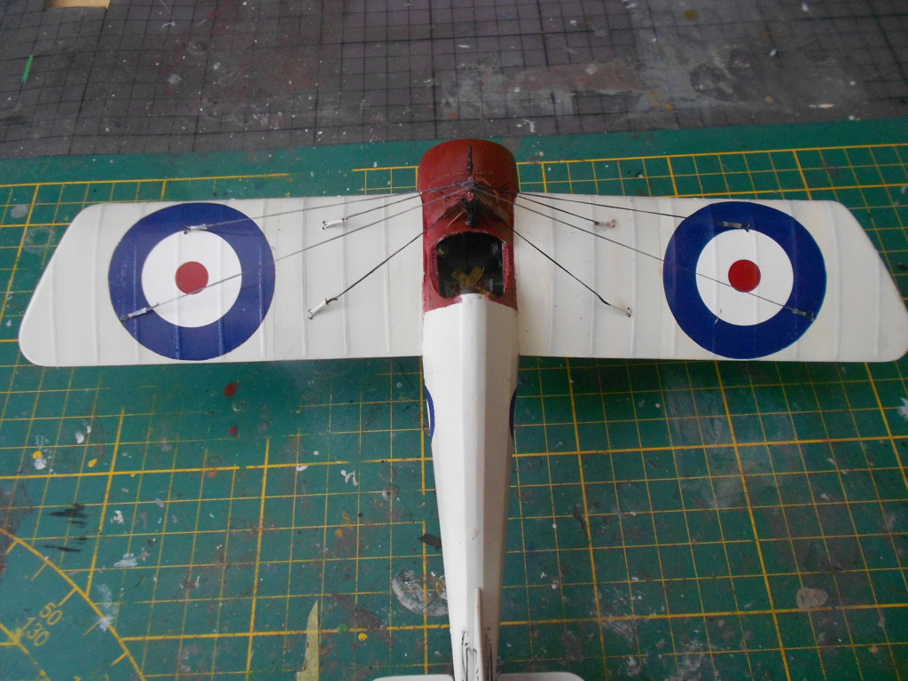 Morane-Saulnier Type N - 1/32 - Special Hobby - Page 3 Dscn5257