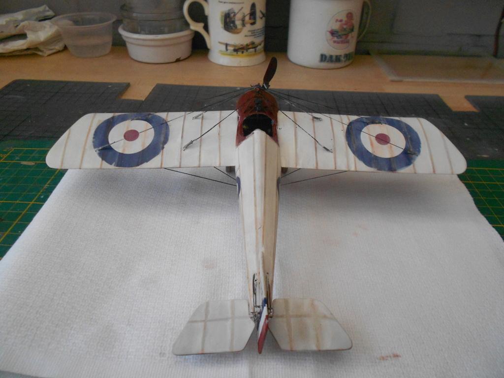 Morane-Saulnier Type N - 1/32 - Special Hobby - Page 3 Dscn5280