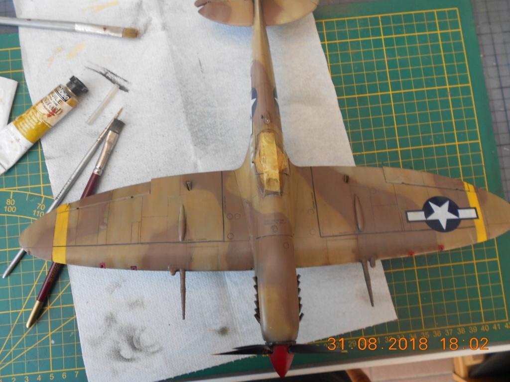 Supermarine Spitfire MK VIII 1/32 Tamiya  - Page 2 Patine19