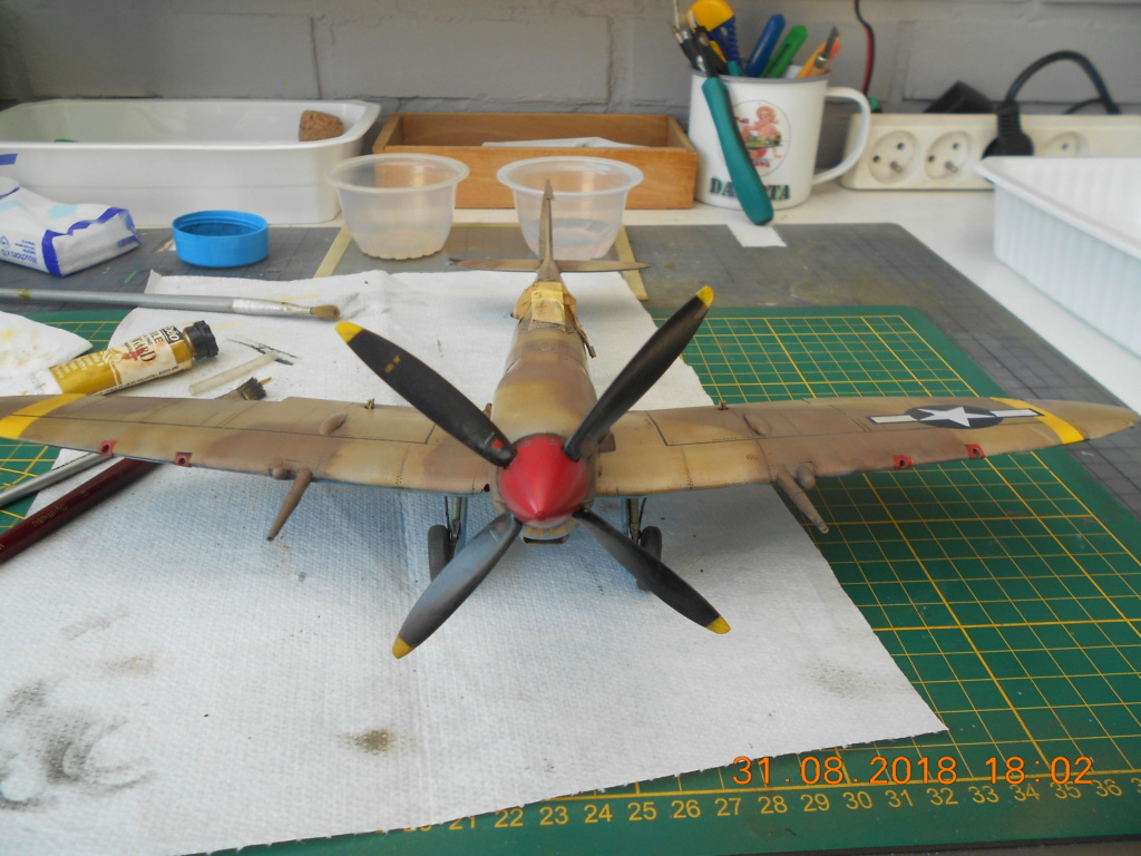 Supermarine Spitfire MK VIII 1/32 Tamiya  - Page 2 Patine21