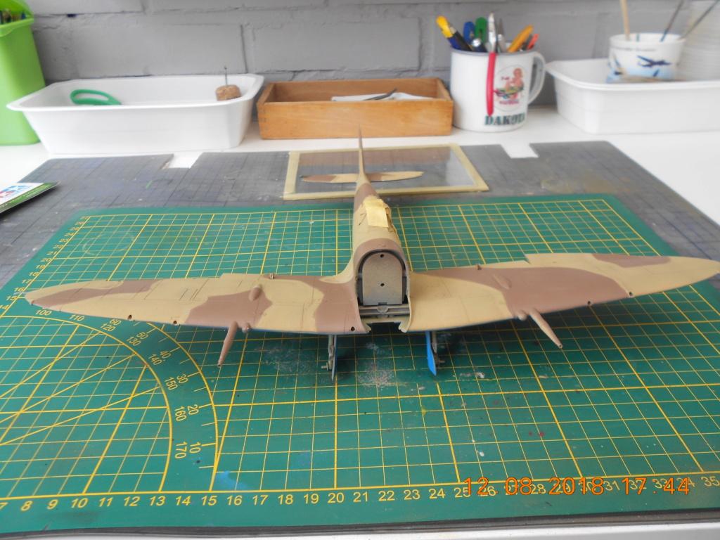 supermarine spitfire mk VIII 1/32 tamiya  - Page 2 Peintu23