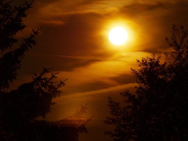 Contre-nuit P6251210