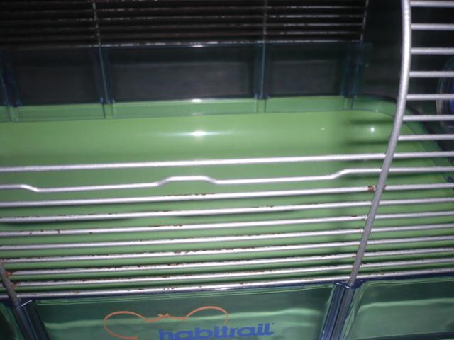 [VDS] Petite cage de quarantaine/cage pour petits rongueurs. P1300530