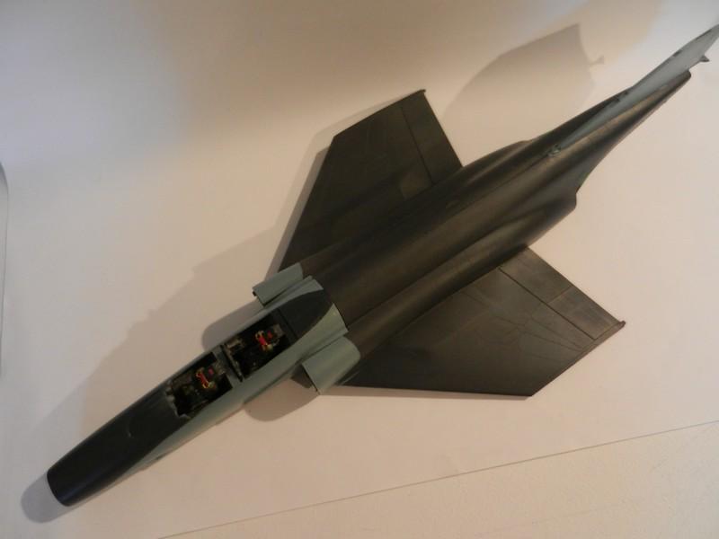 Chasseur Phantom RF-4C Dscn9621
