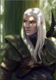 Mes images d'elfes Avatar22