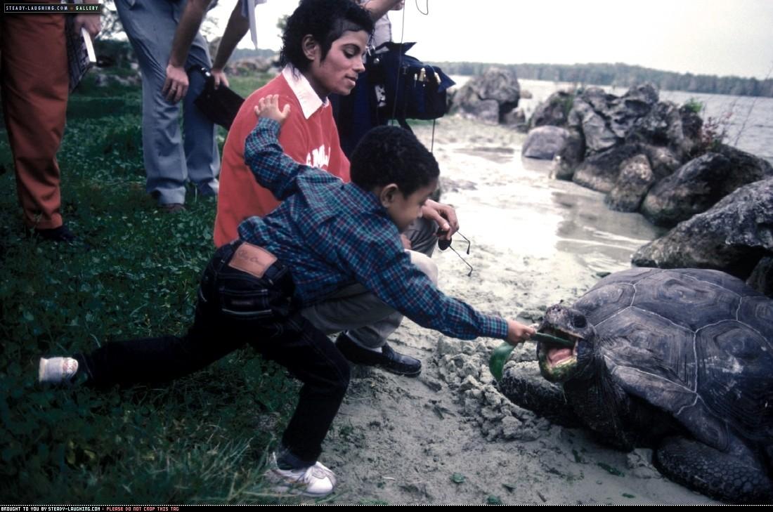 Michael e gli animali!! - Pagina 3 1612