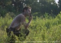 THE WALKING DEAD - Page 2 News2058