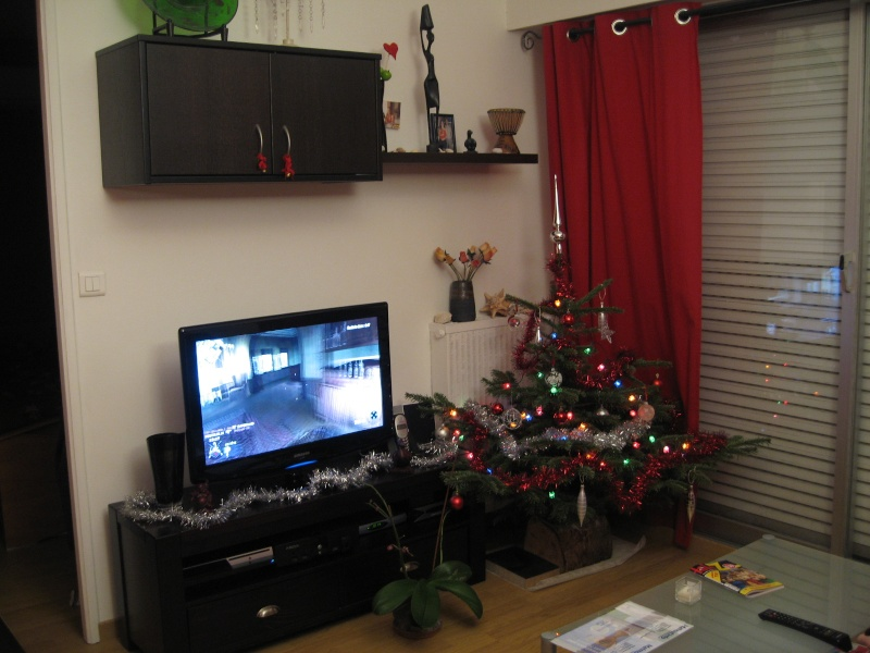 Vos décorations de Noël Noal_210