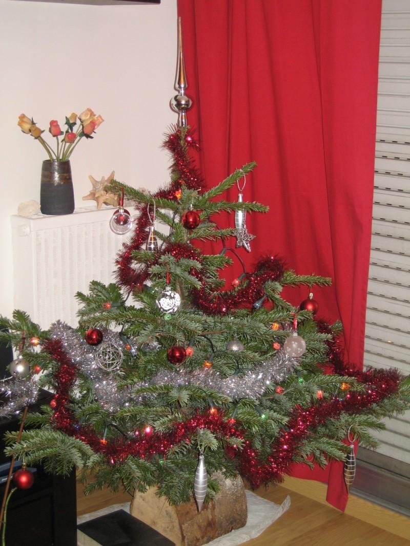 Vos décorations de Noël Noal_211