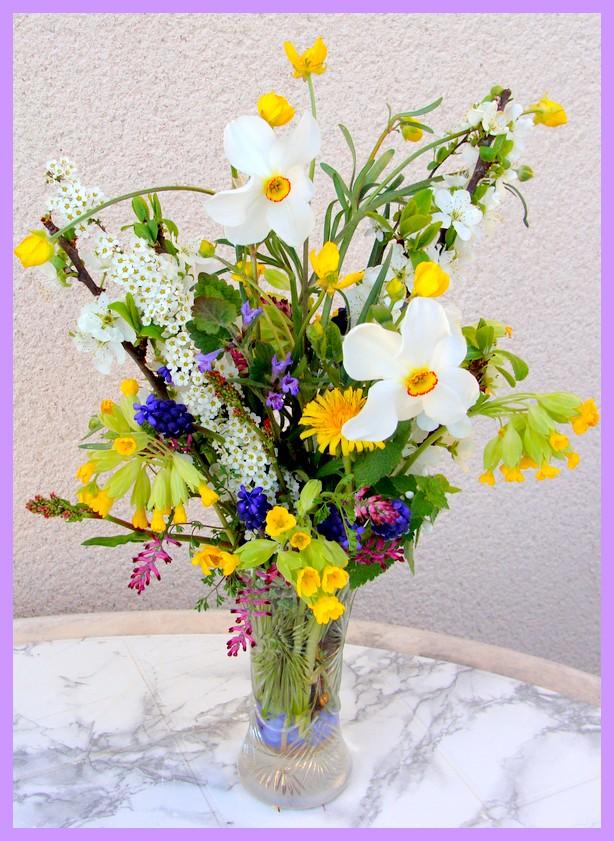 Concours du mois d'avril 2010. Thème : Les premières fleurs du printemps Dsc00810